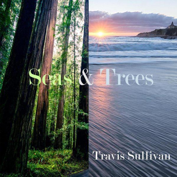 Seas & Trees album art